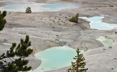 Norris Geyser Basin in May